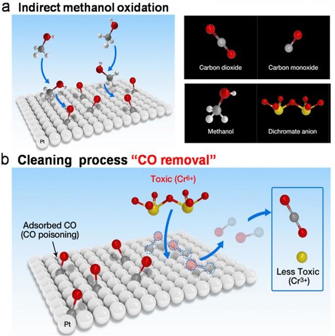 일산화탄소 피독 현상이 제거되는 메커니즘을 나타낸 모습. - 기초과학연구원 제공